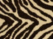 Masland.Zebra1.jpg