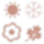 saisonal_Zeichenfläche_1.png