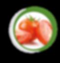 Navegant per Cambrils - Revista de Cambrils - Aliment del Mes - El Tomàquet