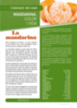 Navegant per Cambrils - Revista de Cambrils - Aliment del Mes - La mandarina