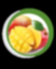 Navegant per Cambrils - Revista de Cambrils - Aliment del Mes - El Mango