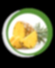 Navegant per Cambrils - Revista de Cambrils - Aliment del Mes - La Pinya