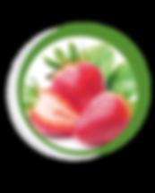 Navegant per Cambrils - Revista de Cambrils - Aliment del Mes - La maduixa