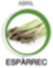 Navegant per Cambrils - Revista de Cambrils - Aliment del Mes - espàrrec - Salut