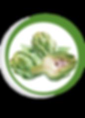 Navegant per Cambrils - Revista de Cambrils - Aliment del Mes - La Carxofa