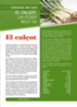 Navegant per Cambrils - Revista de Cambrils - Aliment del Mes - El calçot