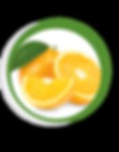 Navegant per Cambrils - Revista de Cambrils - Aliment del Mes - La Taronja