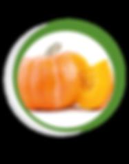 Navegant per Cambrils - Revista de Cambrils - Aliment del Mes - La Carabassa