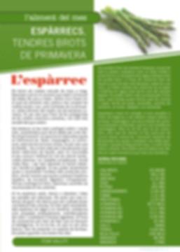 Navegant per Cambrils - Revista de Cambrils - Aliment del Mes - espàrrec - Nutrició - Valor nutricional - aliment