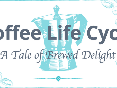 Coffee Life Cycle: A Tale of Brewed Delight