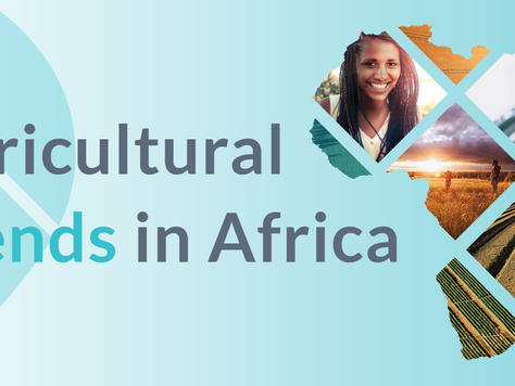 Agricultural Trends in Africa