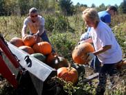 Pumpkin_09.jpg