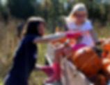 Pumpkin2017_11a.jpg