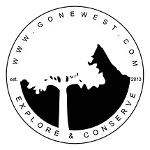 Tree logo no green.png
