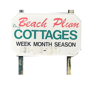 Beach Plum.png