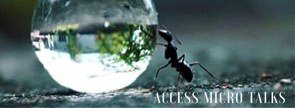 Access Talks mit Dirk Bigell