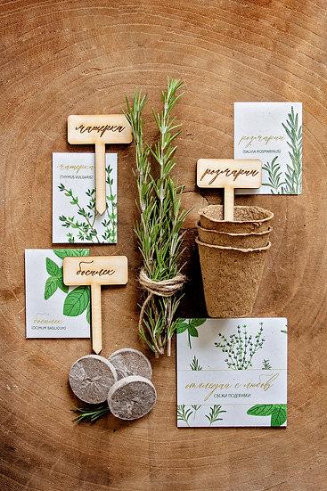 Оригинален подарък - билкова градинка за дома, 3 саксии, 3 торфени таблетки, 3 вида семена, 3 дървени табелки.