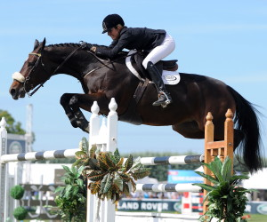 Show-Jumping-photo-3-300x250