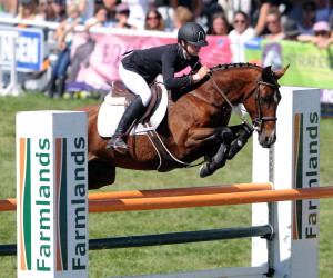 Show-jumping-photo-1.-300x250