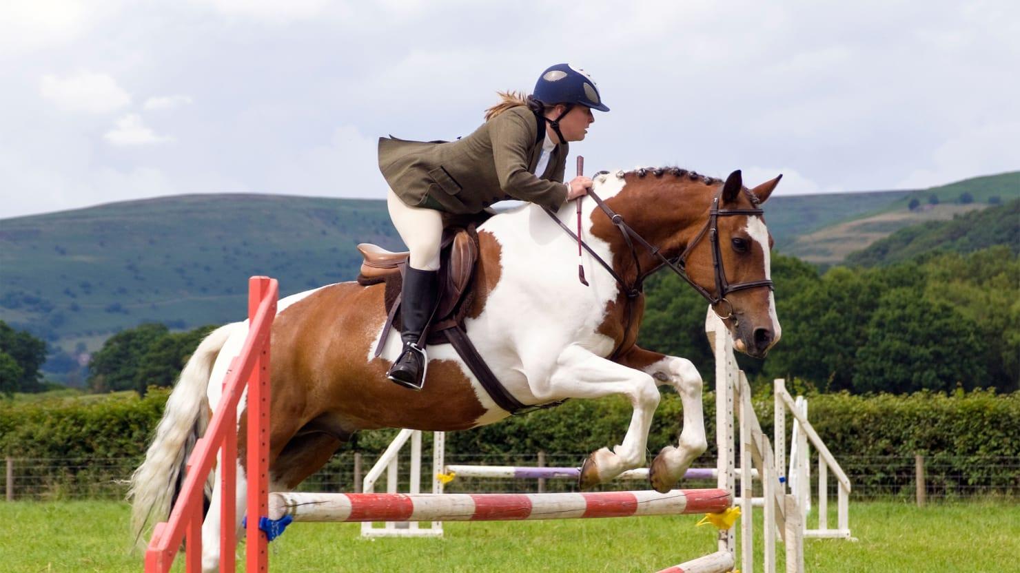 150725-sykes-pony-club-tease_wmstyi