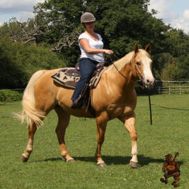 Western-horse-riding