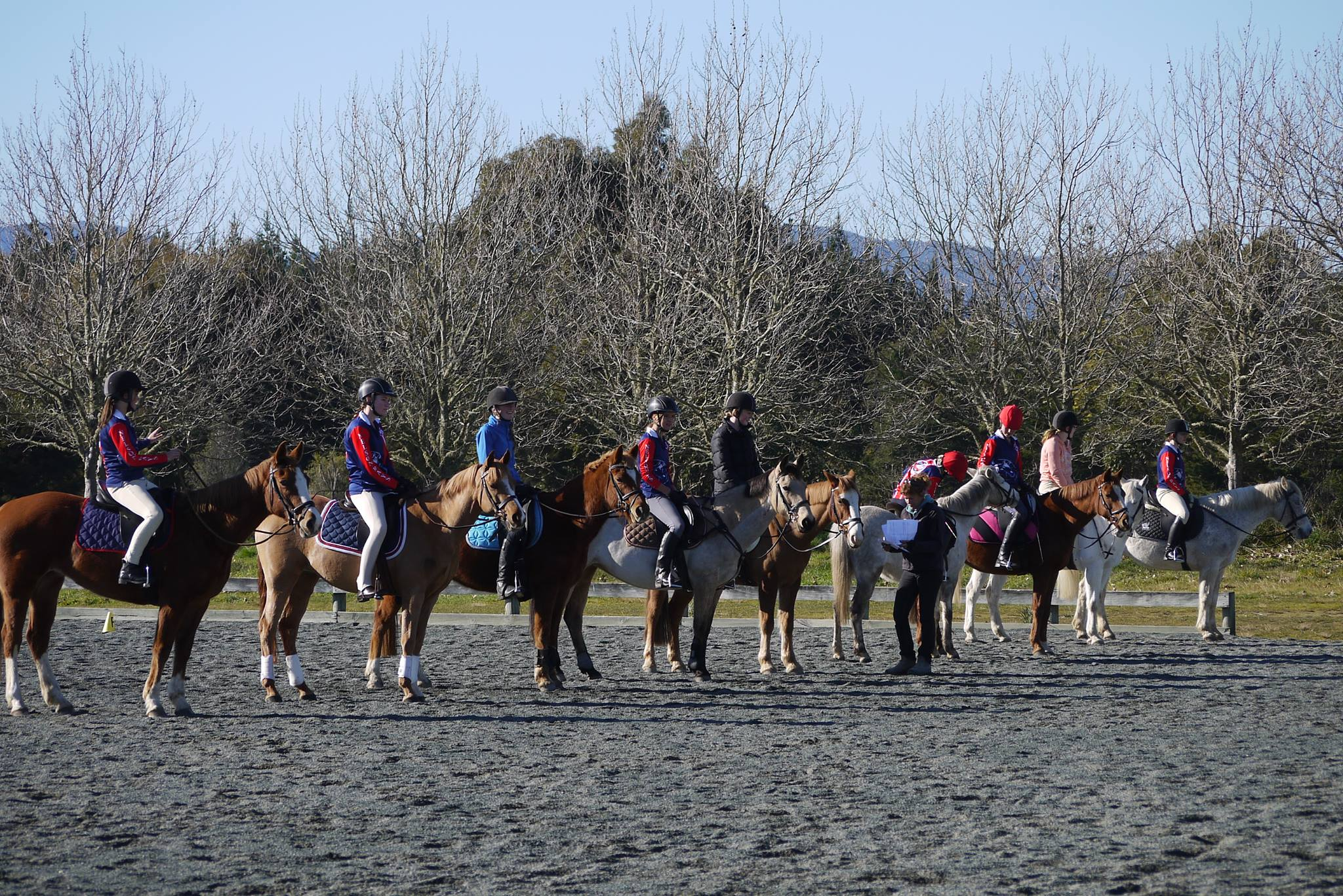 All Our Horses