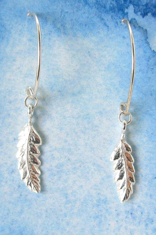 w silver fern drops