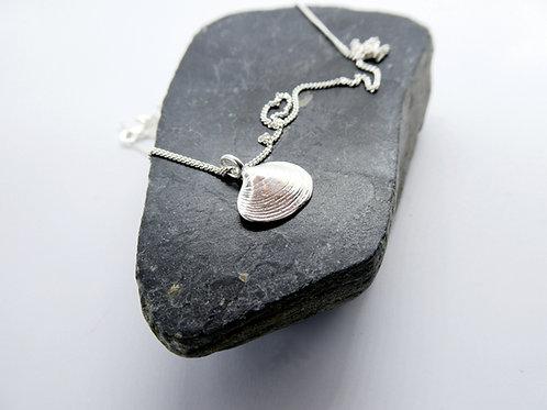 w/s lyall bay pendant