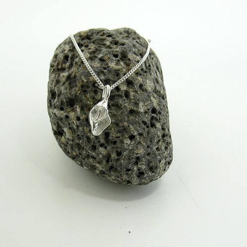 christchurch shell pendant