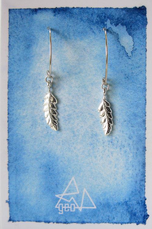 silver fern drops