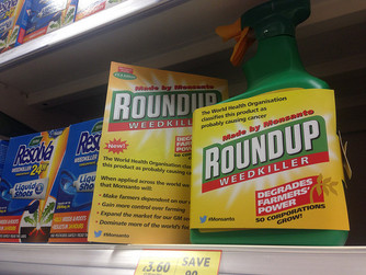 "Did Germany ""plagiarize"" Monsanto's glyphosate studies? My latest for Genetic Literacy"