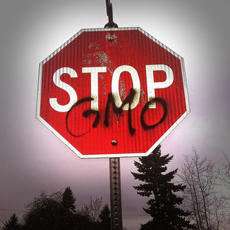 GMOs in the developing world: 'Colonialism in science is still alive and well'?