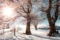 winter-weist.jpg