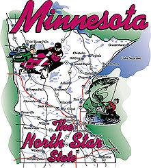 Minnesota T-shirt Transfers 12pc