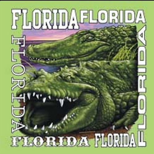 Florida T-shirt Transfers