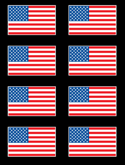 US Flag Gang Sheet T-shirt Transfers 12pc