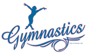 Gymnastics T-shirt Transfers 12pc
