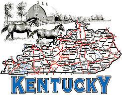 Kentucky T-shirt Transfers 12pc