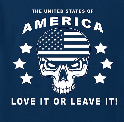 American Flag Skull T-shirt Transfers 12pc