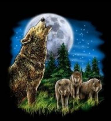 wolf t-shirt transfers