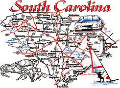 South Carolina T-shirt Transfers 12pc