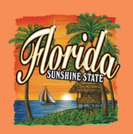 Florida T-shirt Transfers Wholesale