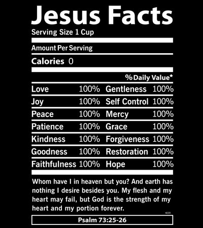 Jesus Facts T-shirt Transfers 12pc