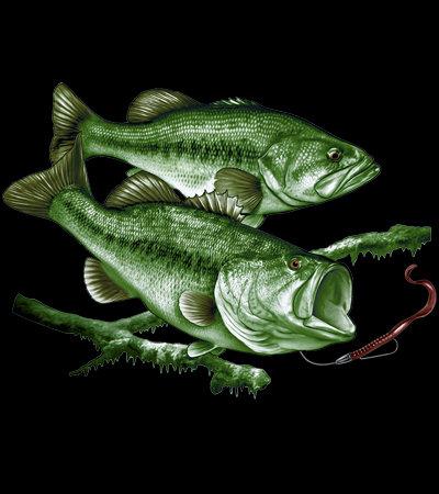 Bass Fishing T-shirt Transfers 12pc