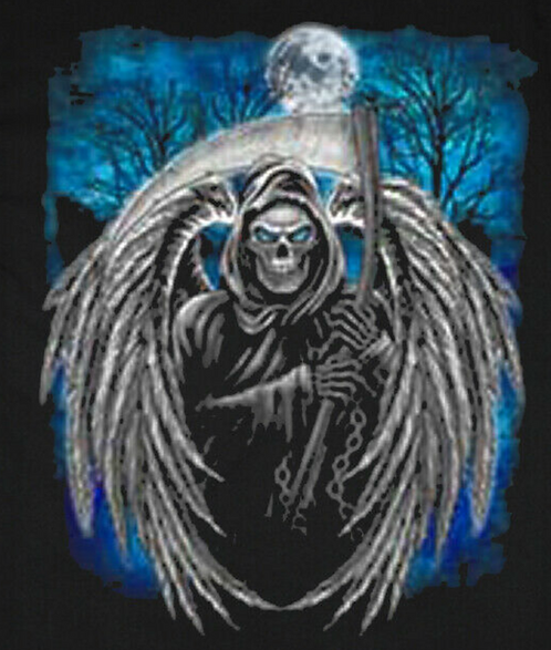 Grim Reaper Wings T-shirt Transfers 12pc