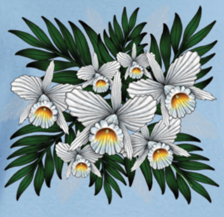 Tropical Flowers T-shirt Transfers 12pc