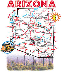 Arizona T-shirt Transfers 12pc