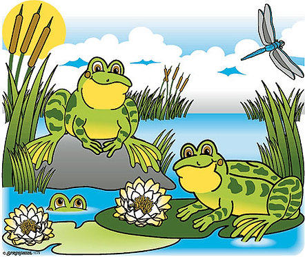 Frogs on Lily Pads T-shirt Transfers 12pc