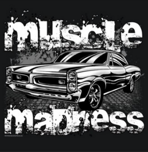 Muscle Car T-shirt Transfers 12pc