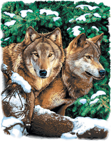 Winter Wolves T-shirt Transfers 12pc